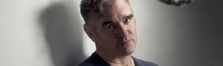 Morrissey-gato-806x500
