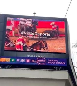 #NoEsDeporte: La impactante campaña contra el rodeo que se tomó las calles