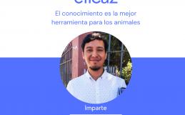 Clase sobre activismo eficaz en favor de los animales